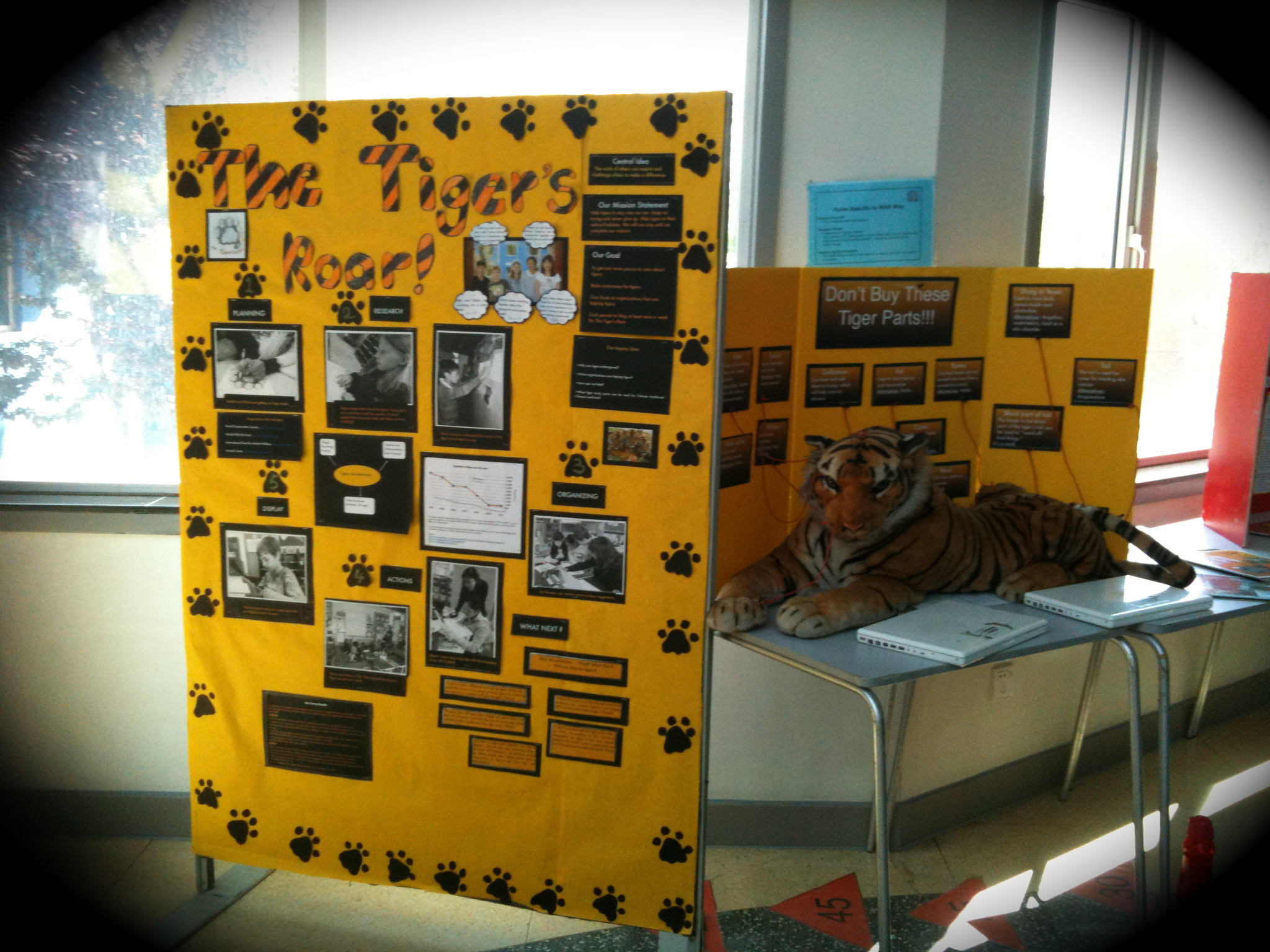 Pyp Exhibition Displays : Examples of past exhibition visual displays ms favilli s